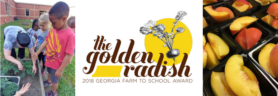 Golden Radish logo and images of School Nutrition fresh ingredients