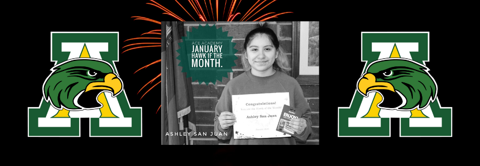 Jan Hawk of the Month