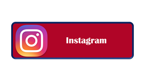 instagram button